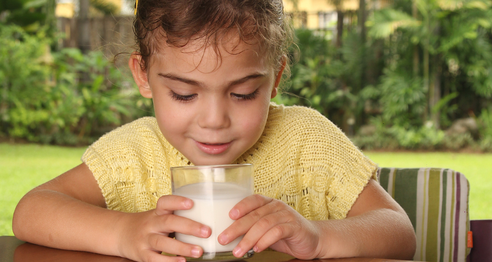 why is growing up milk so important for 3 year olds hipp organic